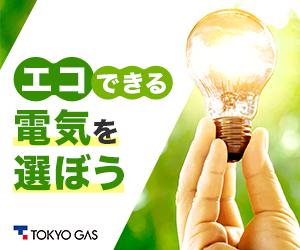 東京ガス【さすてな電気】