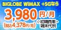 BIGLOBE WiMAX/NECビッグローブ