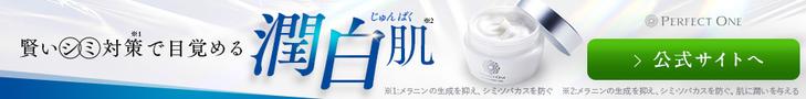 パーフェクトワン 単品販売促進 - 新日本製薬株式会社