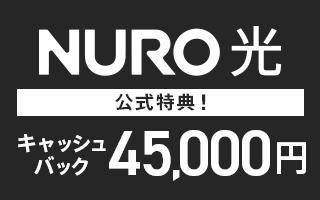 超高速インターネット 下り最大2Gbps NURO 光(公式)
