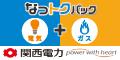 関西電力【なっトクプラン】会員獲得プロモーション