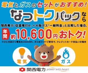 関西電力【なっトクパック】