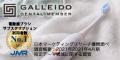 GALLEIDO DENTAL MEMBER